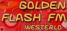 logo Golden Flash